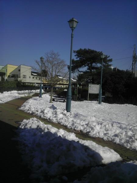 Imag0809